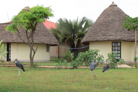 Victory Bijja Hotel Masindi offers budget accommodation on 54homes